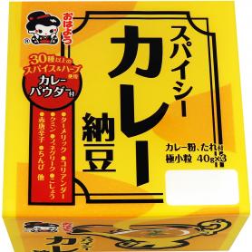 ヤマダフーズスパイシーカレー納豆